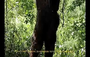 Sweet Circumspection &amp_ the Adventure of Bigfoot (2011)